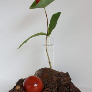 Vase mit Roter Jaspis Kugel 4cm (765)