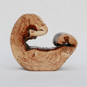 'Embryo' Buche H9 B12 T4cm (1616)